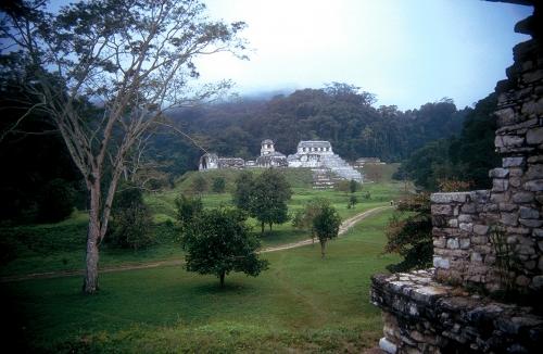 Palenque (Mexico)